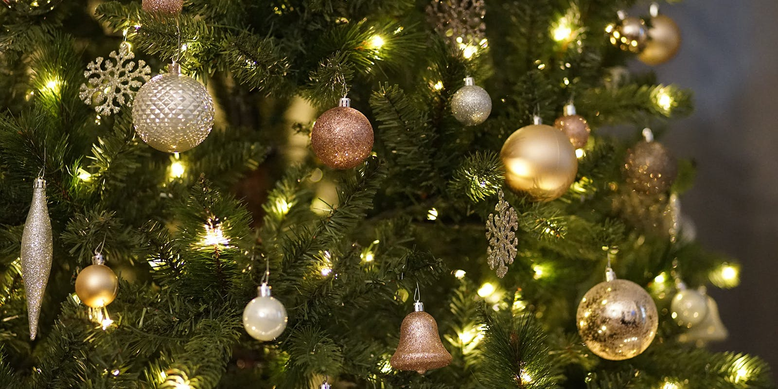 Sophie Gray's top tips for a cracker Christmas
