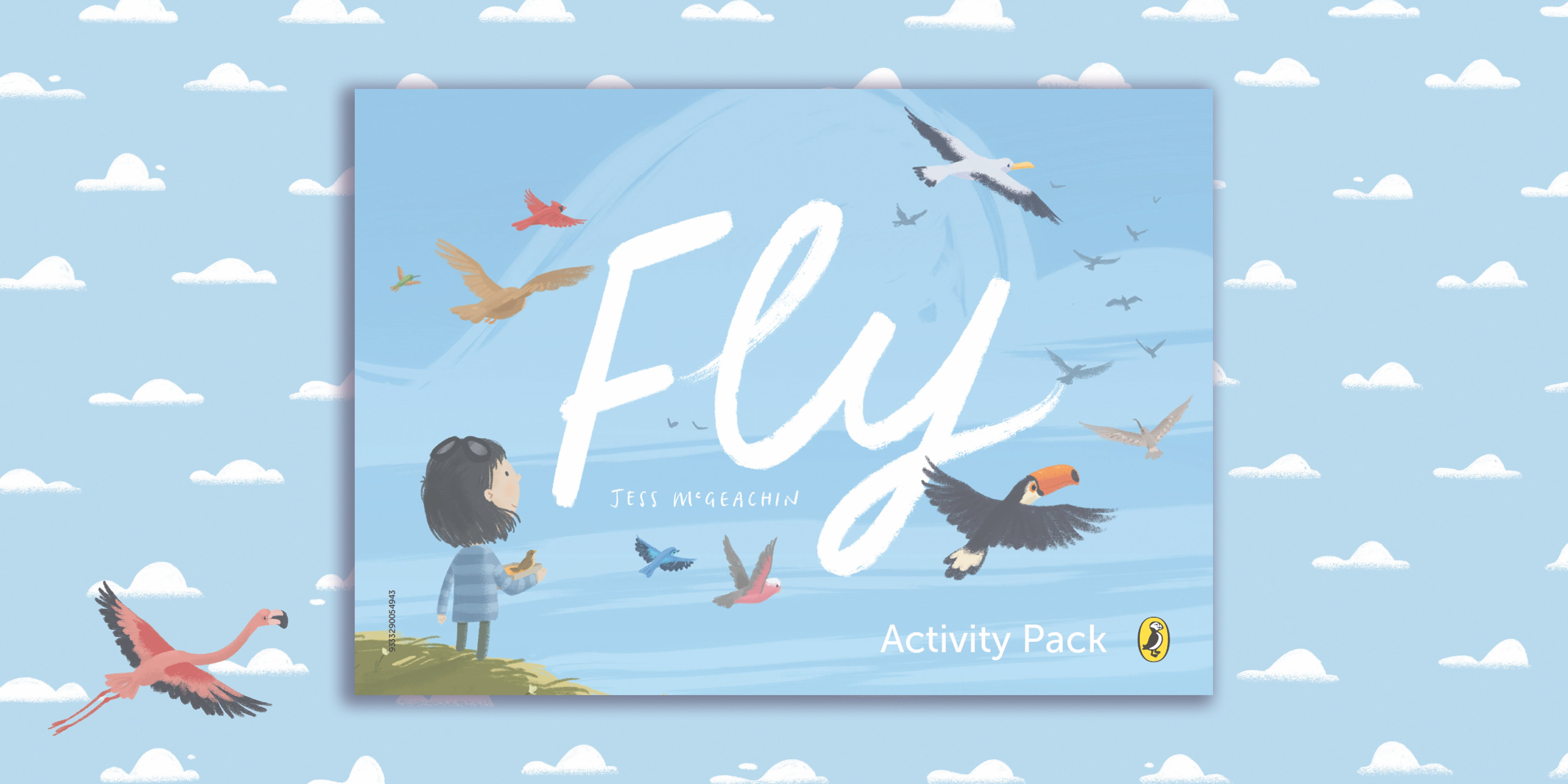 Fly activity pack