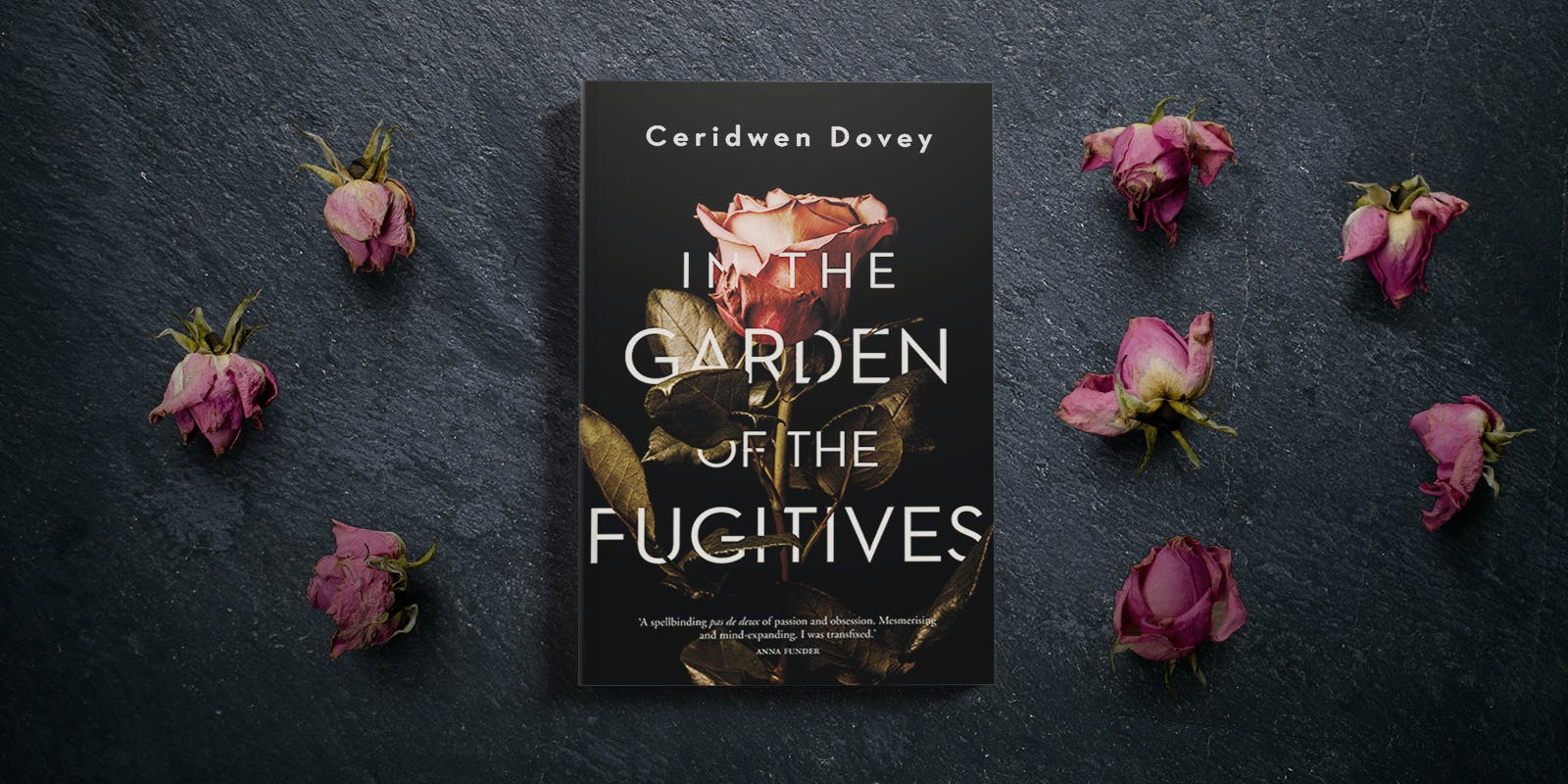 In the Garden of the Fugitives book club notes