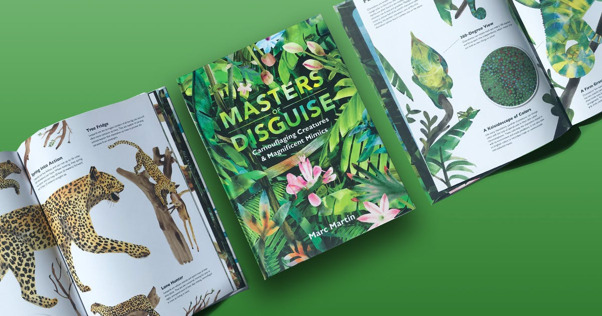 Masters of Disguise activity pack