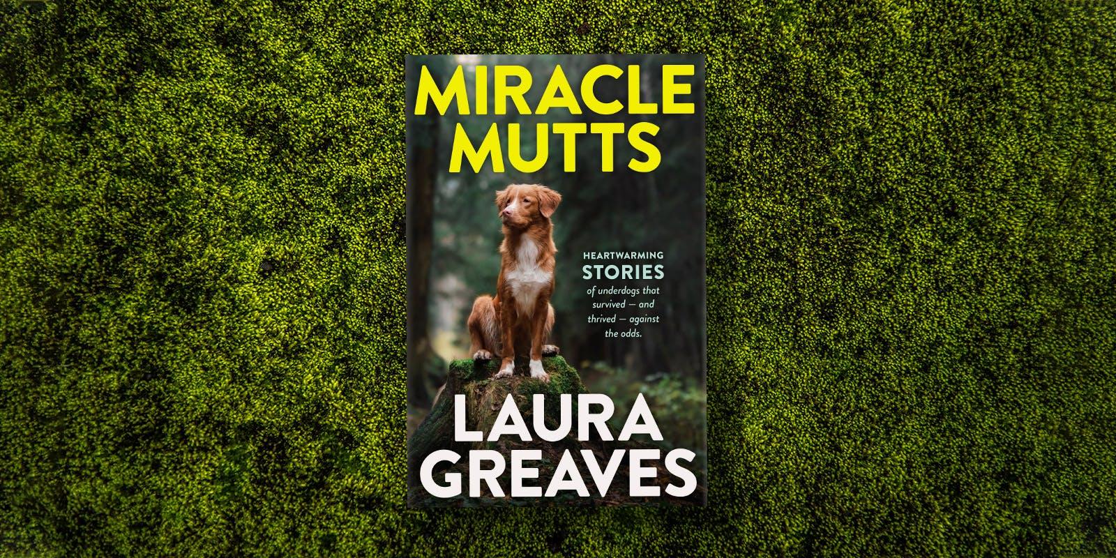 Meet Miracle Mutt Fergus