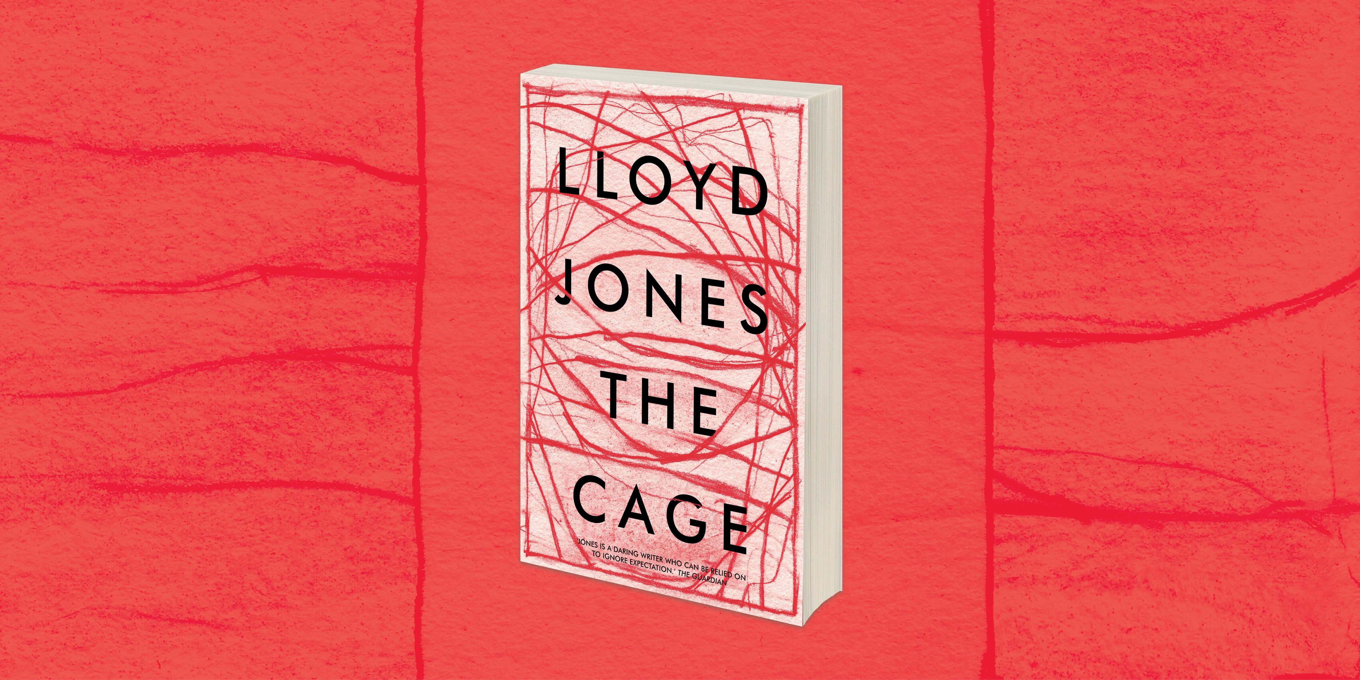 The Cage - book club guide