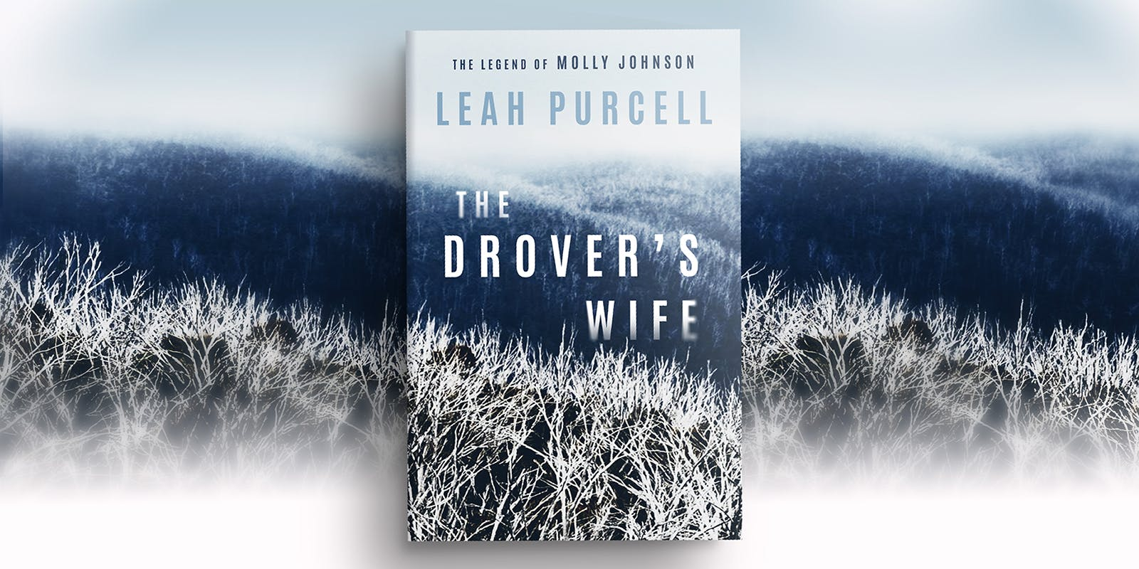 The Drover's Wife book club notes