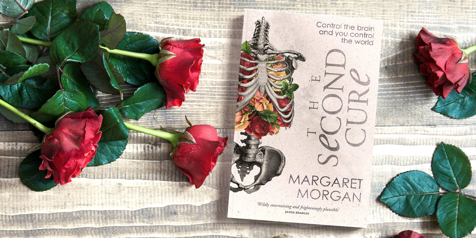 The Second Cure book club notes