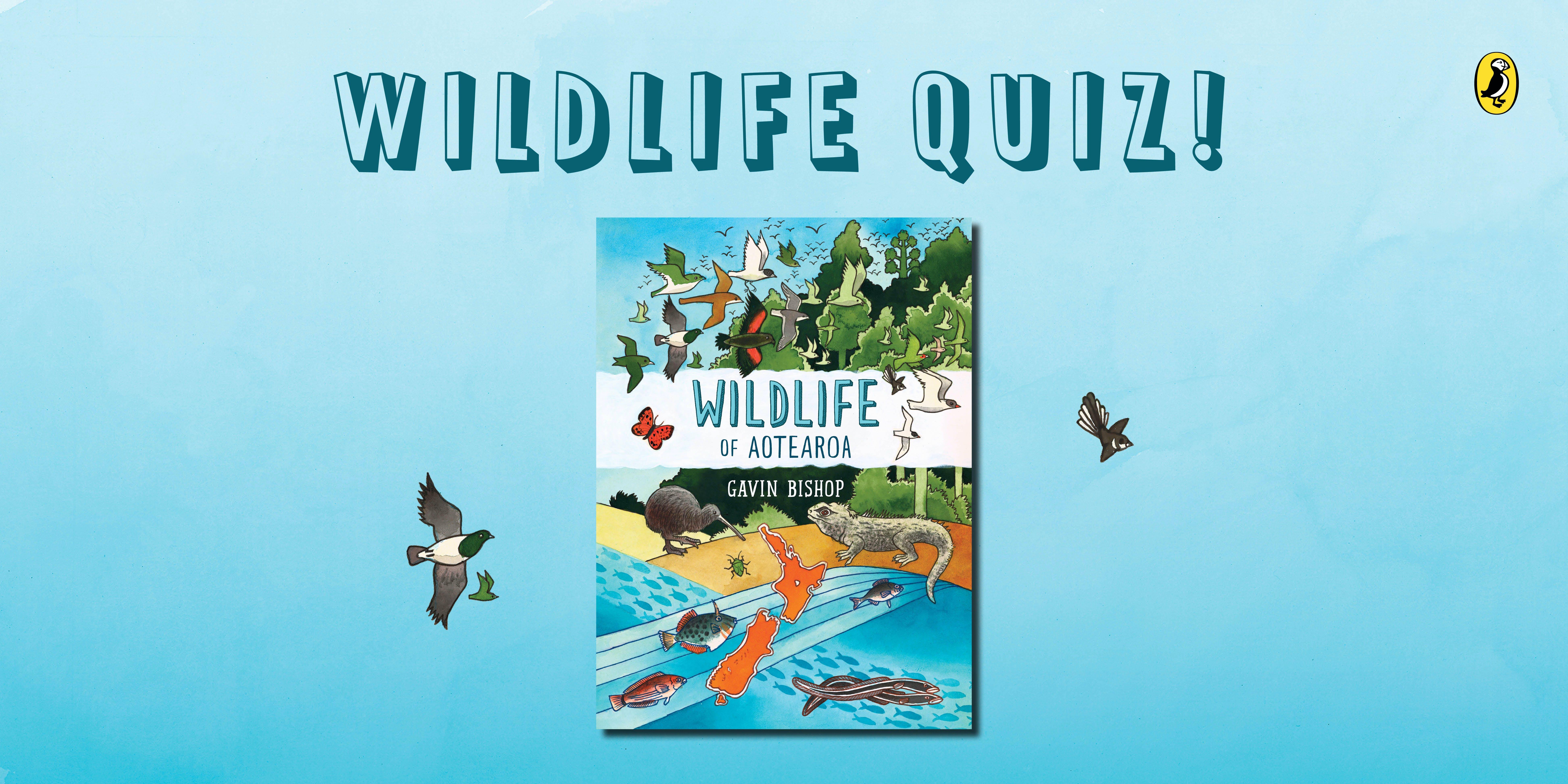 Wildlife of Aotearoa quiz!